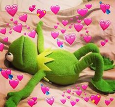 kermit the frog with hearts Cute Cat Memes, Cute Love Memes, Funny Memes, Cartoon Memes, Cartoons, Sapo Meme, Frog Wallpaper, Heart Meme, Funny Reaction Pictures