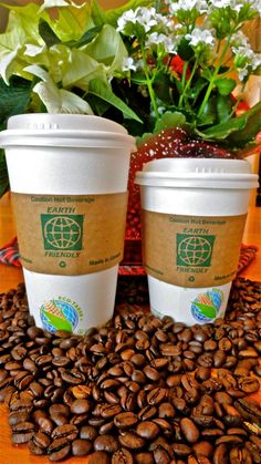 Global Eco Products / Eco Ware – From nature to your table and back to nature Eco Coffee Cup, Compost, Plant Based, Planter Pots, Beverages, Tableware, Hot, Dinnerware, Composters