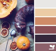 { culinary autumn } image via: @_ewabakrac