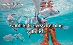 just girly things I hate swimming with fish it creeps me out but one day getting up the courage to do it would be sweet!