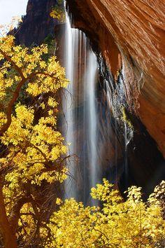 Falls over Emerald pool,   Zion National Park, Utah