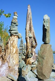 Driftwood art in hungary by tamas kanya by on DeviantArt Land Art, Stone Balancing, Art Et Nature, Rock Sculpture, Landscaping With Rocks, Driftwood Art, Environmental Art, Outdoor Art, Pebble Art