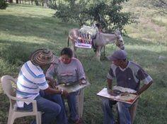 """""""Con mi burrito sabanero voy por los campos a ayudar, si me ven, si me ven es en los campos a ayudar."""" Cortesía: Fundación Biblioburro, Santa Marta, Magdalena (Colombia)."""