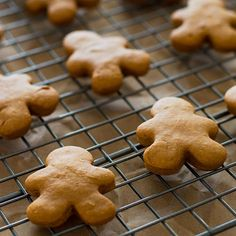 Horse and Dog Gingerbread Treats are a simple and easy way to show your pets you care this Christmas!