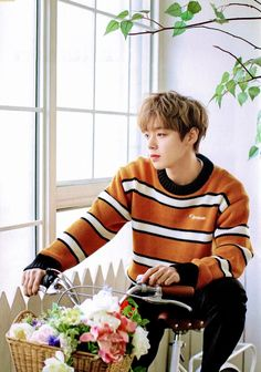 K Pop, Steven Universe, Park Jihoon Produce 101, Justin Gray, Baby Park, Boy Celebrities, Park Shin Hye, Ha Sungwoon, Cha Eun Woo