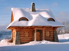 """Amazing cabin from """"The Little Log House Company"""""""