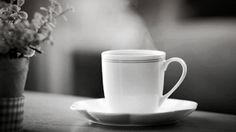 Gifs cafeinados que vão te manter acordado pelo resto do dia   Catraca Livre