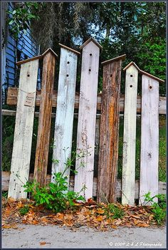 Bird house fencing