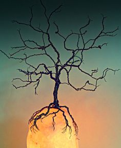 Wire Tree and Lighted Rock Sculpture Tree by KristinRebecca, $95.00