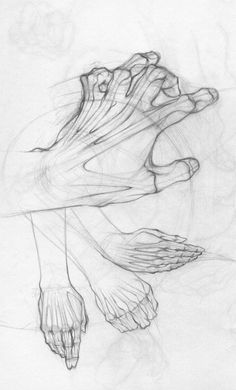 (Hands Study by ~shemit on deviantART)  I rather like how the bones and skin were drawn together in this.