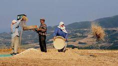 MutlulukBence Bizim Köydeydi dedirtecek 12 Köy Fotoğrafı   Afşin Elbistan Haberleri