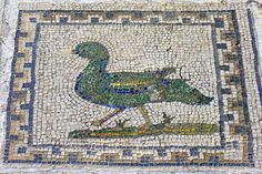 2nd. Century domestic mosaic, Italica, Andalucia, Spain, 2… | Flickr