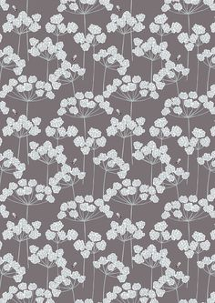 Cow Parsley & Bee on Earth  A95.3 - COUNTRY LIFE - Lewis and Irene - By the Yard