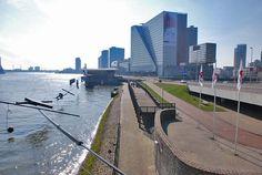 Een sfeerimpressie van de Boompjeskade te Rotterdam. Het is van belang dat de groenstructuur zo veel mogelijk behouden wordt.