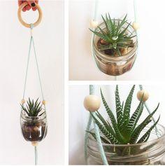 Plantes suspendus