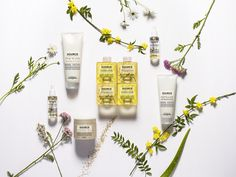 🌿 Formulated with 80 to high-quality, naturally derived ingredients, Source Essentielle is the very first L'Oréal Professionnel range… Shampoo Bottles, Shampoo Bar, Calendula, Rama Seca, L'oréal Professionnel, Natural Haircare, Fancy, Sunflower Oil, Hair Conditioner
