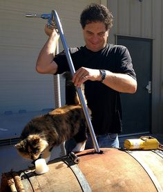 With a sense of smell is about fourteen times as strong as a human this winery cat, Yoda, helps Winemaker Jeff Steele fill barrels,
