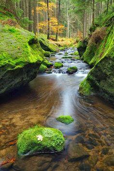 Autumn Stream, Czech Republic