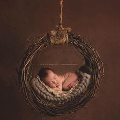 Image of Pacific Northwest, Uniqely Hand Crafted, Newborn Grapevine Hammock or Dream Catcher