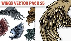 designious-vector-wings-25-small