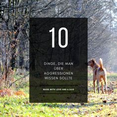 10 Dinge, die man über aggressionen wissen sollte | I Love Dogs, Dog Training, Books, Left Out, Dog Training Tips, Pooch Workout, Livros, Libros, Book