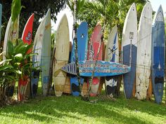 Surfboard Fence on Maui....hard to find but worth the hunt.
