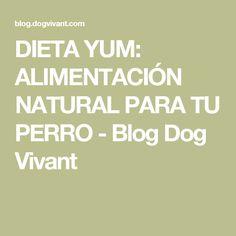 DIETA YUM: ALIMENTACIÓN NATURAL PARA TU PERRO - Blog Dog Vivant