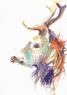 JEN BUCKLEY Original highland STAG Watercolour PAINTING signed large A3
