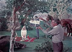 "A rare and beautiful clapperboard from the later December fourth week of filming (!!) of the first pilot ""The Cage."" In this fourth take shot we see Christoper Pike (behind the clapper), Vina on the blanket, the famous red thermos, and two horses, Tango, and the un-named in the episode (but named in the filming script) Mary Lou - all of course from the earth illusion sequence."