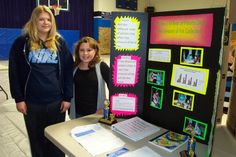 Brittany Whittington and Amber Monteer compared the grease content of various brands of potato chips for their place finish in the 2013 Missouri regional middle school science fair. Science Party, Science Gifts, Science Activities For Kids, Cool Science Experiments, Science Ideas, Learning Activities, Science Fair Board, Science Fair Projects Boards, Science Classroom Decorations