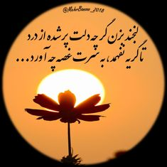 Persian, Poems, Positivity, Celestial, Quotes, Beautiful, Quotations, Persian People, Poetry