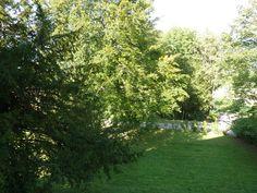 Le Jardin Thielle-wavre Switzerland Sidewalk, Houses, Plants, Gardens, Homes, Side Walkway, Sidewalks, Planters, House
