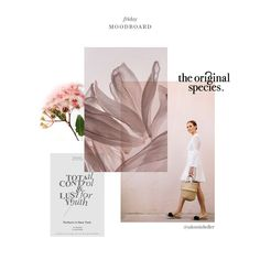 Dusty pinks, florals by Jasmine Dowling and serifed typefaces. Logo Design, Layout Design, Branding Design, Editorial Layout, Editorial Design, Lookbook Layout, Lookbook Design, Mode Collage, Crea Design