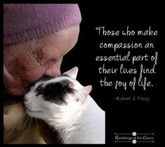 Compassion is the key to joy pet loss grief/dog love Pet Loss Grief, Compassion Quotes, Love Is An Action, Healing Words, Network For Good, Stop Animal Cruelty, Joy Of Life, All About Cats, Animal Quotes