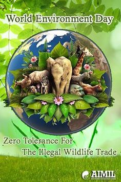 The continued existence of #wildlife and #wilderness is important to the #quality of life of #humans...  #WorldEnvironmentDay