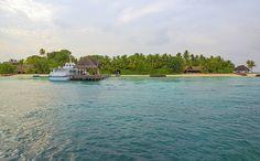 Beautiful Maldivian tropical island by Yana Reint #yanareint #yanareintphoto # homedecor #maldives #tropical #iasland