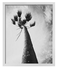 """Palm Tree"" by Stephanie Sherman, $375, 16.75"" x 20.75"", available at #serenaandlily #artcollection"