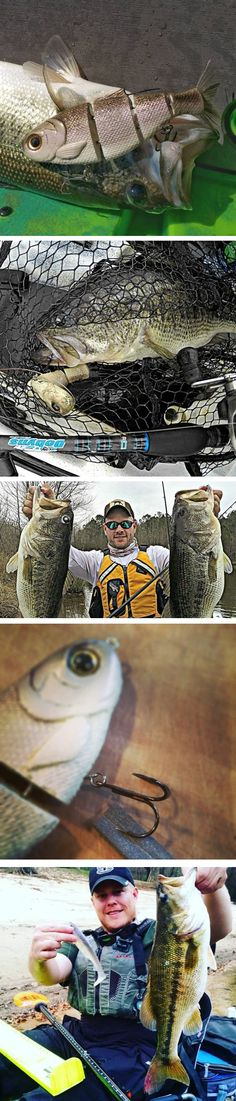 """Swimbait fishing is one of my true passions, and something I have devoted the majority of my fishing time towards over the last four years. I will launch an ongoing series on swimbait fishing from a kayak fisherman's point of view. Although a """"Kayak Swimbait 101"""" crash course is on the way, I find that mistakes teach more than lectures. These Top 10 mistakes are all hard-learned, hard-earned topics I hear echoed by other experienced swimbait fishermen."""