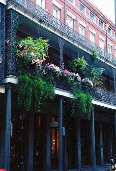 Chartres St., New Orleans. A lot of history but really loud on Friday and Saturday nights!