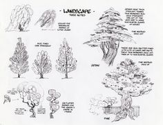Thoughts on drawing landscapes & trees