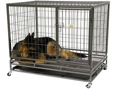 Go Pet Club Heavy Duty Metal Cage, 43-Inch by 30 by 38-Inch * Read more at the image link. (This is an affiliate link) #CatCages