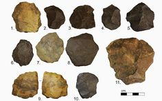 Sciency Thoughts: Stone tools from the Middle to Late Pleistocene of the Nefud Desert.