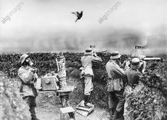 WWI; A pigeon is used to test the toxicity of the gas, German trench. Undated. ©AKG Images