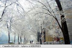 ANM: Informare meteo de vreme rece și ger în întreaga țară, în intervalul 31 decembrie 2015 - 3 ianuarie 2016 – AGERPRES