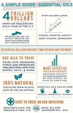 A Simple Guide to Essential Oils  www.mydoterra.com/197502/  Help us hit 11k likes and you could win some of essential oils, Discover the Aroma of Essential Oils, https://www.facebook.com/Discoveraroma?ref=hl  Let see if we can get 500 likes And 500 share on this post...