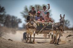 Passing more donkey carts than cars while manoeuvring along some wild stretches on the way to Sossusvlei. Image credits : James Suter