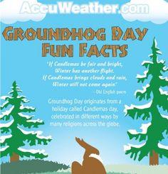 Groundhog Day Infographic 3