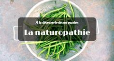 Tout savoir sur ma passion : la naturopathie How To Dry Basil, Herbs, Passion, Blog, Eat Healthy, Homemade Mask, Naturopathy, Lemon, Everything