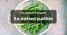 Tout savoir sur ma passion : la naturopathie