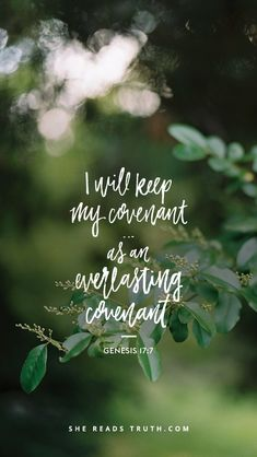 Weekly Truth (#SheReadsTruth)